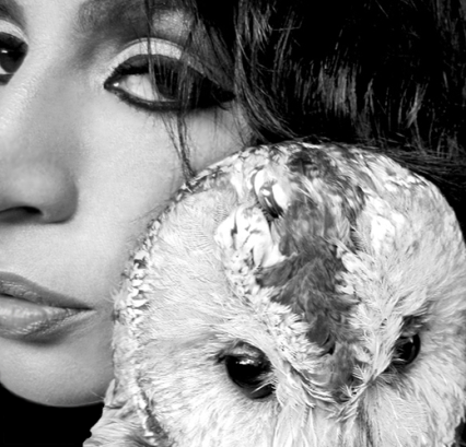 Suzy-Kassem-and-pet-owl