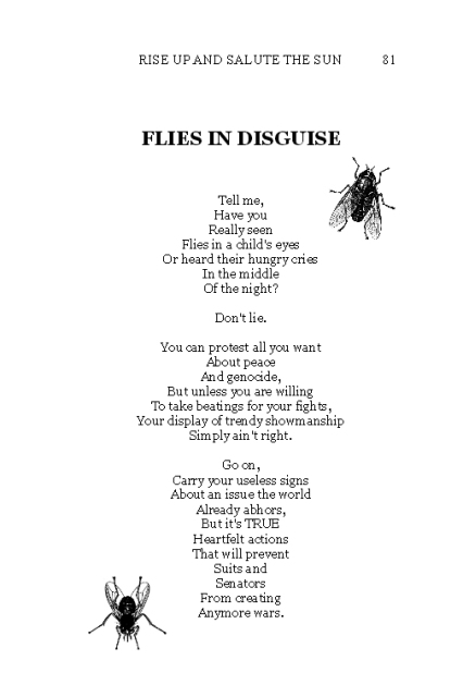 flies-in-disguise-suzy-kass