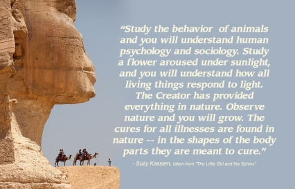 suzy-kassem-nature-quote