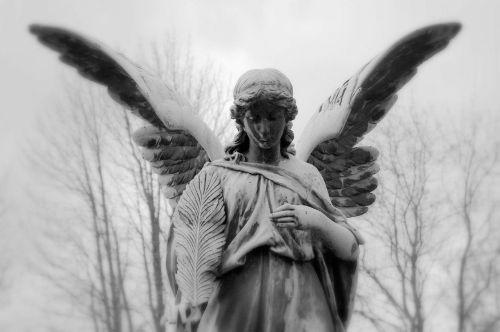 angels around us 2