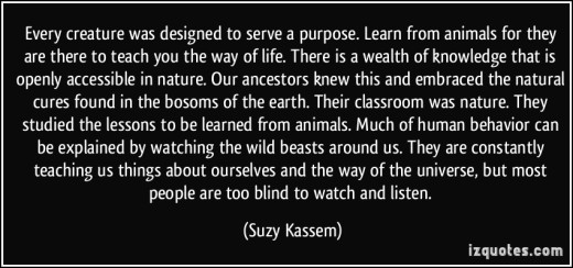 quote-every-creature-was-designed-to-serve-a-purpose-learn-from-animals-for-they-are-there-to-teach-you-suzy-kassem-388406