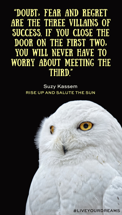 Doubt, fear and regret are the three villains of success. However, if you close the door on the first two, you will never have to worry about meeting the third. - Suzy Kassem