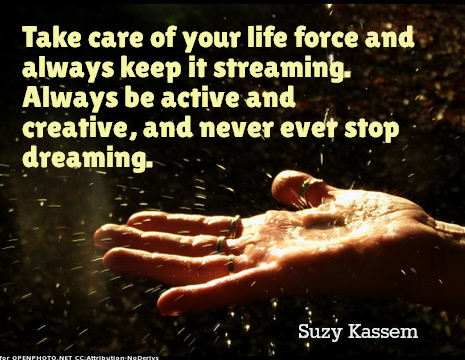 Take care of your life force and always keep it streaming. Always be active and creative and never ever stop dreaming. Suzy Kassem