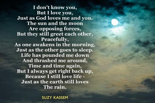 Endurance Poetry Suzy Kassem